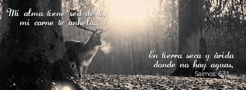 De facebook salmos 63 1 quot mi alma tiene sed de ti mi carne te anhela